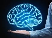 مفاجأة.. الدماغ يتوقف عن إنتاج خلايا الذاكرة في سن 13 عاماً