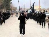 """مسؤول في برلمان النمسا: أمريكا سبب ظهور """"داعش"""""""