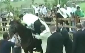 شاهد.. حصان وطائر يضعان تميم وأردوغان في موقف محرج