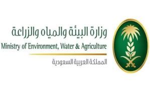 """""""البيئة"""" تعلن عن وظائف مؤقتة للسعوديين في الرياض"""