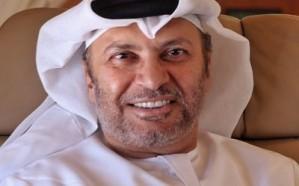 هكذا علق وزير الدولة للشؤون الخارجية الإماراتي على عملية عفرين!
