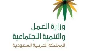 """""""العمل"""": إلزام المنشآت الصغيرة  بتوظيف سعودي واحد في هذه الحالة"""