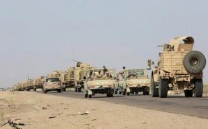 الجيش اليمني يأسر مسؤولا للمليشيا الحوثية في محافظة حجة