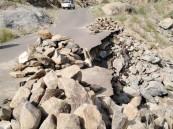 """بلدية """"العرضية الشمالية"""" توضح أسباب عدم إصلاحها طرق قرية """"الصحنة"""""""