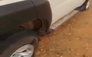 شاهد.. انفجار إطارات سيارة إثر صاعقة رعدية بالرياض