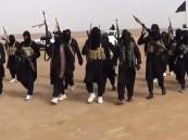 "تقرير أممي يدين ممارسات ""داعش"" ويصفها بـ ""جرائم حرب"""