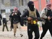 قتل 17 من عناصر تنظيم داعش الإرهابي بغارة جوية شمالي تكريت العراقية