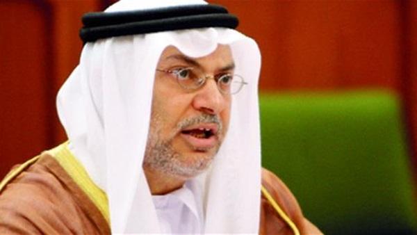 قرقاش: الإمارات تتصدر الحضور في القرن الأفريقي.. ومحاور سياستنا الخارجية واضحة