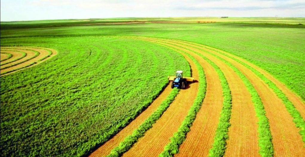 وزير البيئة: المملكة تجاوزت تحدي جائحة كورونا بسلاسل إمداد قوية ووفرة غذائية