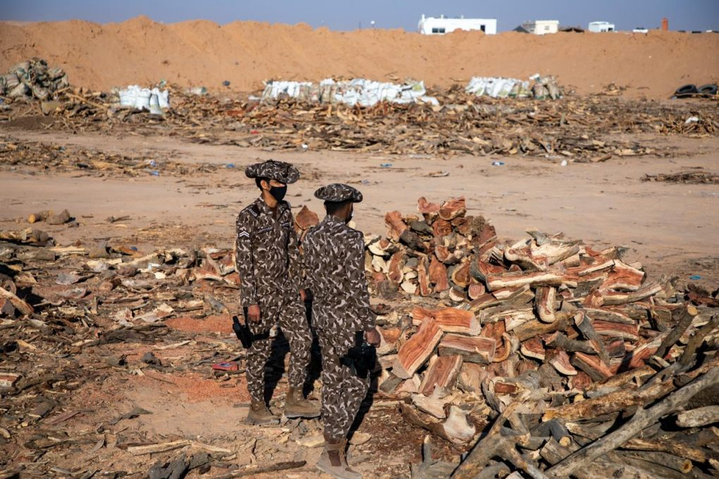ضبط 90 طناً من الحطب المحلي المعد للبيع في مدينة الرياض