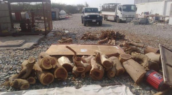 إيقاف 18 مخالفًا لنظام البيئة ضُبط بحوزتهم حطب محلي