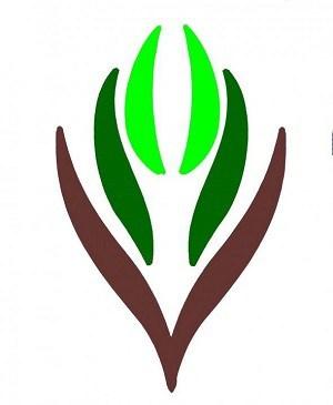 """لجنة تنمية الطوال تعلن بداية التسجيل في """"جائزة التميز"""" بعشرة مجالات"""